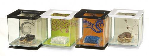Marina betta kit girl aquarium pour combattant for Nourriture combattant