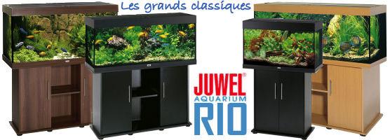 Juwel Rio