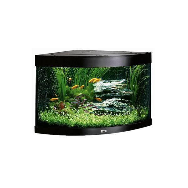 Petit aquarium avec filtre for Filtre petit aquarium