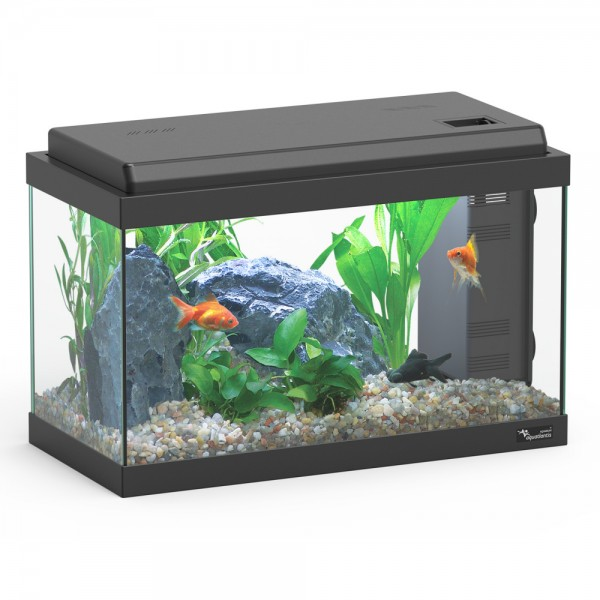 chauffage aquarium 20l. Black Bedroom Furniture Sets. Home Design Ideas