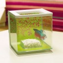 MARINA Betta Kit Girl - Aquarium pour combattant