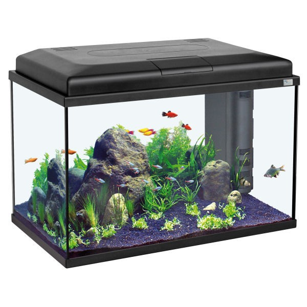 Aquarium aquatlantis start 55 noir for Aquarium prix