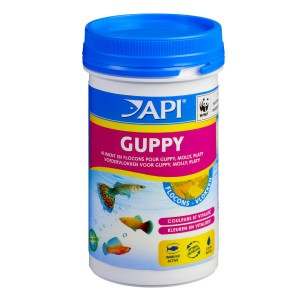 Api guppy flocons aliment pour poissons vivipares for Alimentation guppy poisson rouge
