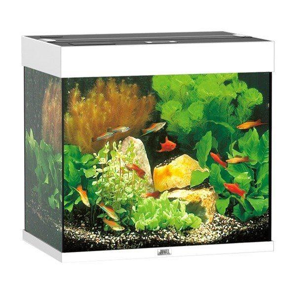 aquarium juwel lido 120 blanc