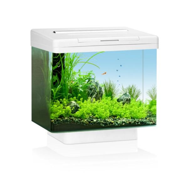 juwel vio 40 blanc led aquarium 30 litres. Black Bedroom Furniture Sets. Home Design Ideas