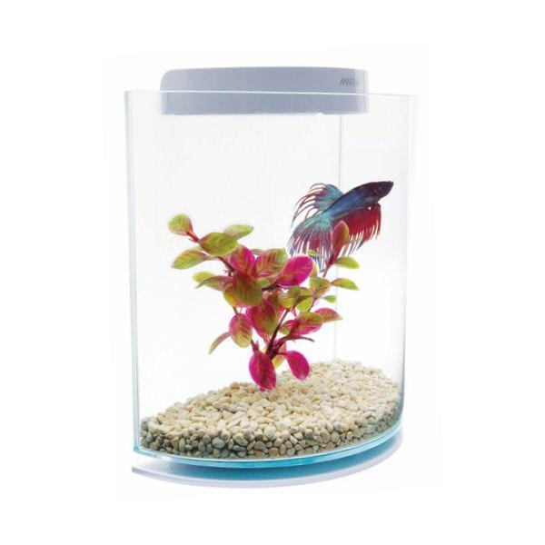 Marina betta kit half moon aquarium pour poisson combattant for Aquarium poisson rouge boule