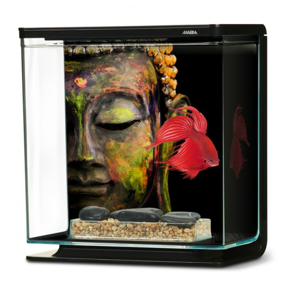 marina betta kit 3l bouddha aquarium pour combattant. Black Bedroom Furniture Sets. Home Design Ideas