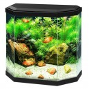 Aquarium CIANO Aqua 30 LED noir