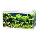 Aquarium CIANO Aqua 60 LED blanc