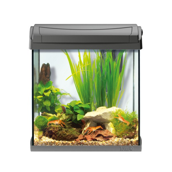 aquarium tetra aquaart 30l gris. Black Bedroom Furniture Sets. Home Design Ideas