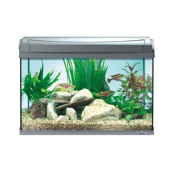 aquarium tetra aquaart 60l. Black Bedroom Furniture Sets. Home Design Ideas