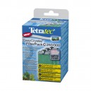 TETRA EasyCrystal FilterPack C 250/300 (charbon)