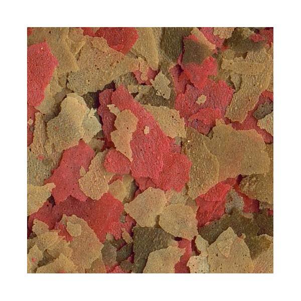 Tetra goldfish aliment en flocons pour poissons d 39 eau froide for Poisson tetra rouge
