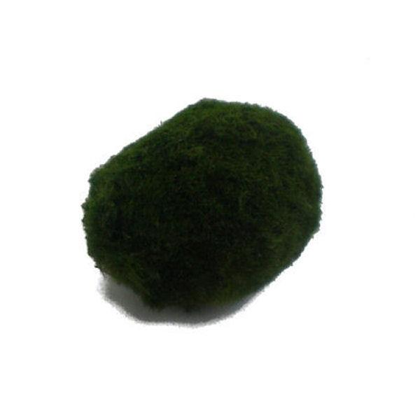 Cladophora aegagropila mousse pour aquarium for Bulleur pour aquarium boule