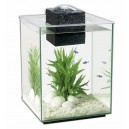 FLUVAL Shui 19L - Aquarium contemporain et original