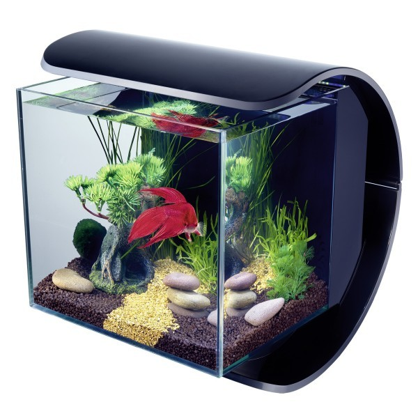 aquarium tetra silhouette led noir. Black Bedroom Furniture Sets. Home Design Ideas